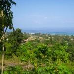 panorama view house, jamaica